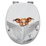 Hund auf der Toilette