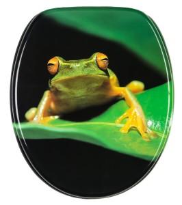wc-sitz-frosch